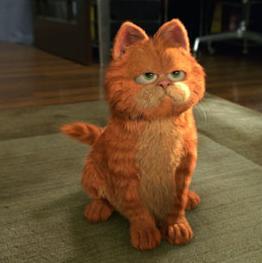 Kot W Kadrze Czyli Kocie ścieżki W Kinie
